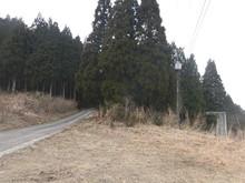 gokuCIMG3173.JPG