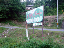 katsukiP1110172a.JPG
