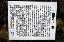 mitsuDSC_0040.JPG
