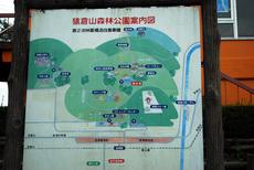 sarukuraDSC_0109.JPG